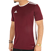 /achat-t-shirts/adidas-tee-shirt-de-sport-entrada-18-jersey-cd8430-bordeaux-124118.html