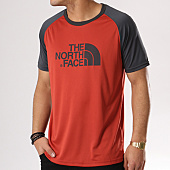/achat-t-shirts/the-north-face-tee-shirt-de-sport-raglan-rouge-brique-gris-anthracite-131056.html