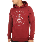 /achat-sweats-capuche/anthill-sweat-capuche-logo-bordeaux-121683.html