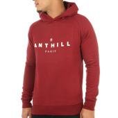 /achat-sweats-capuche/anthill-sweat-capuche-typo-bordeaux-121687.html