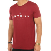 /achat-t-shirts/anthill-tee-shirt-typo-bordeaux-121728.html