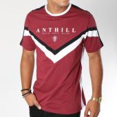 /achat-t-shirts/anthill-tee-shirt-chevron-avec-bandes-bordeaux-146003.html