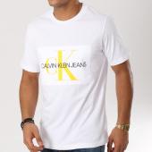 /achat-t-shirts/calvin-klein-tee-shirt-flock-monogram-0405-blanc-160251.html