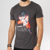 /achat-t-shirts/dragon-ball-z-tee-shirt-kamehameha-gris-anthracite-160275.html