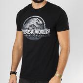 /achat-t-shirts/jurassic-park-tee-shirt-cracked-logo-noir-161548.html