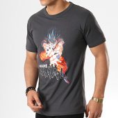 /achat-t-shirts/dragon-ball-z-tee-shirt-kamehamehma-gris-anthracite-178419.html
