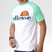 /achat-t-shirts/ellesse-tee-shirt-raglan-cassina-shb00629-vert-clair-blanc-179888.html