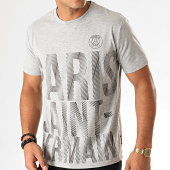 /achat-t-shirts/psg-tee-shirt-graphic-paris-saint-germain-p13048c-gris-chine-193585.html