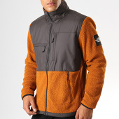 /achat-vestes/the-north-face-veste-zippee-polaire-denali-fleece-381m-gris-anthracite-marron-194238.html