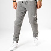 /achat-pantalons-joggings/the-north-face-pantalon-jogging-standard-3xyf-gris-chine-195582.html