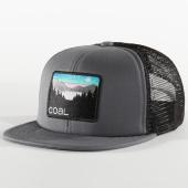 /achat-snapbacks/coal-headwear-casquette-trucker-the-hauler-gris-noir-201529.html